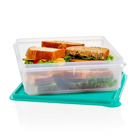 Tupperware Snack- Stor Container